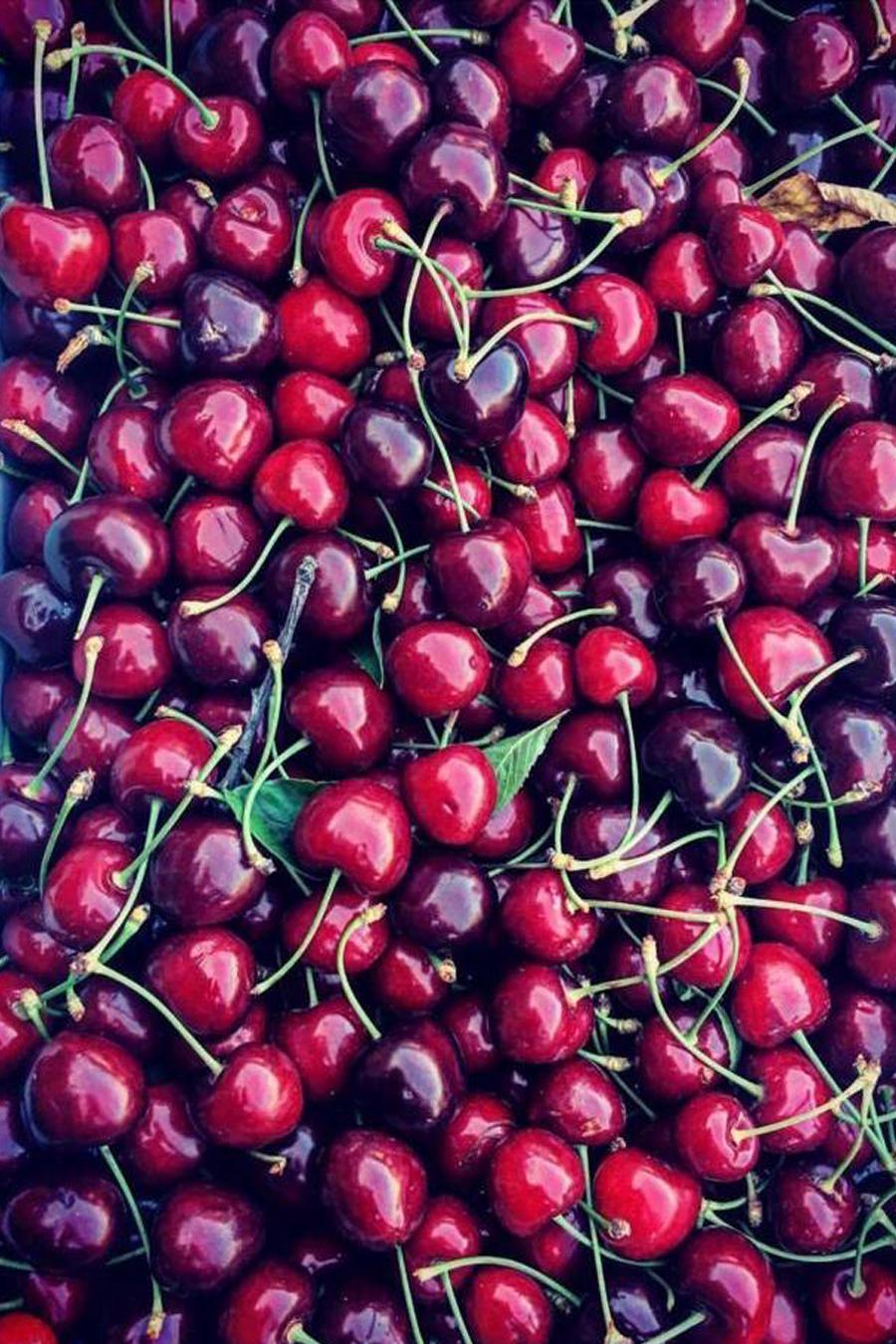 ciliege-romana-frutta